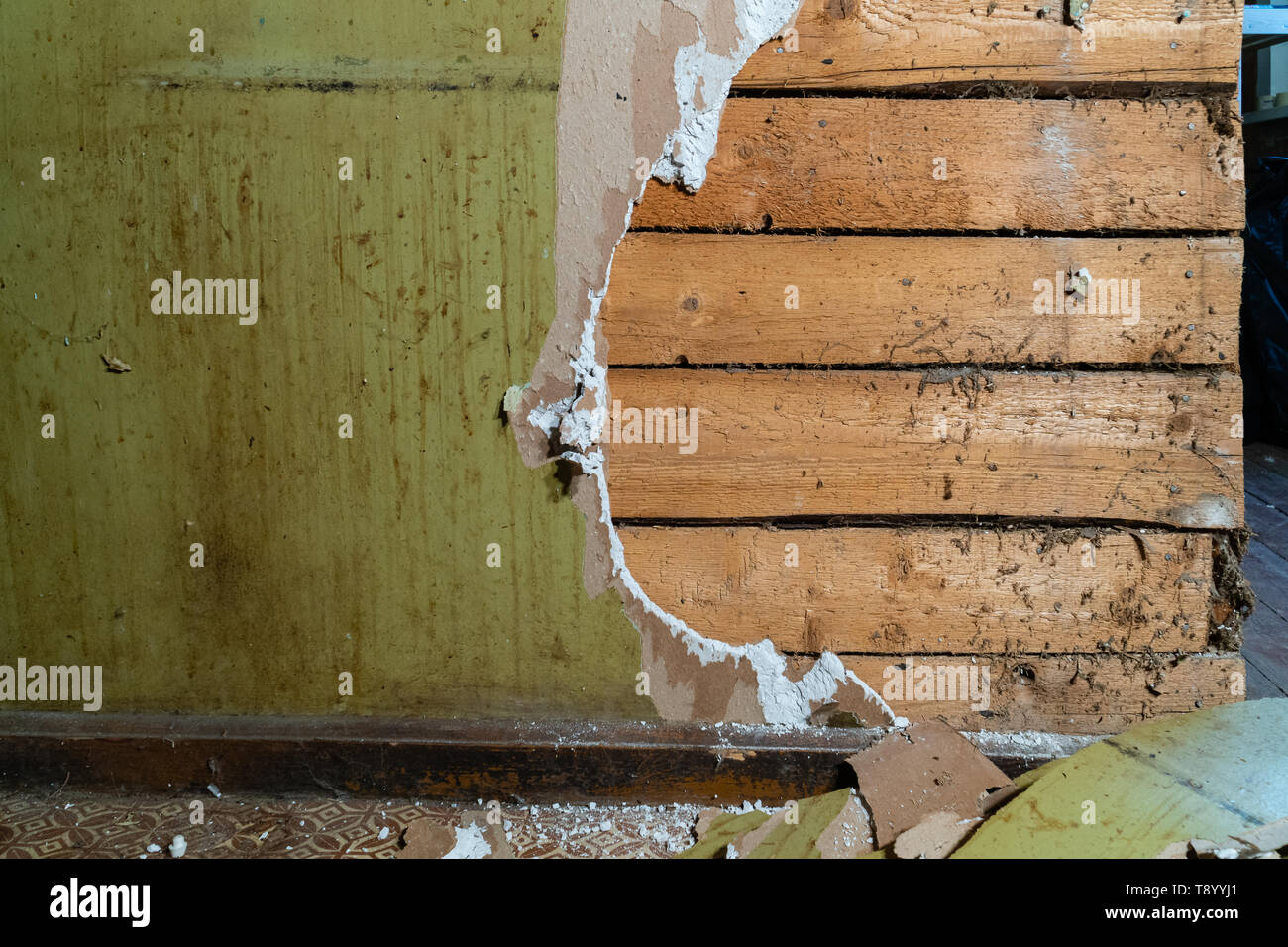 Old plasterboard wall being demolished with wooden boards behind - Stock Image