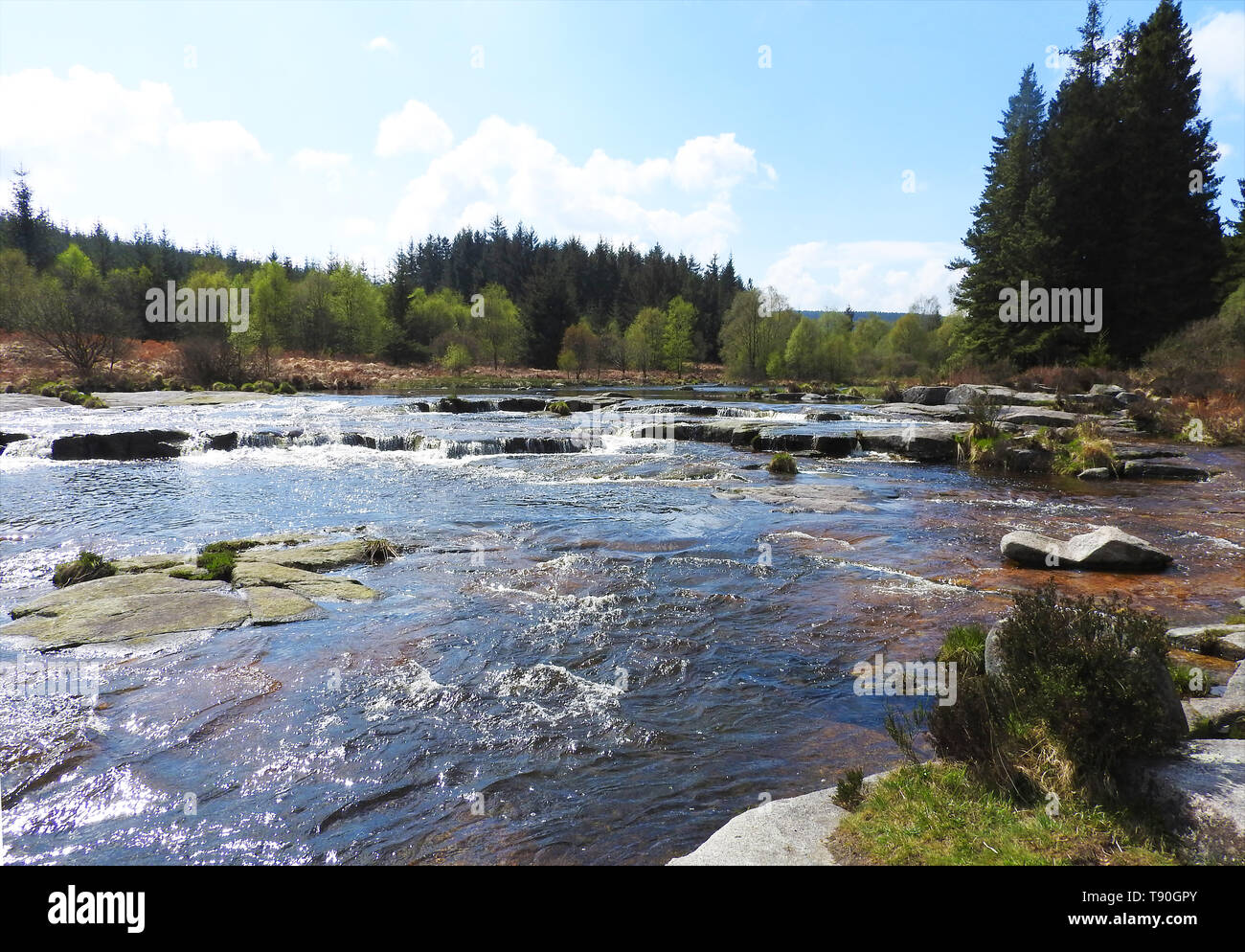 Otter Pool /Otterpool,Raiders Road , Galloway Forest. near Newton Stewart, Wigtownshire Dumfries and Galloway, Scotland Stock Photo