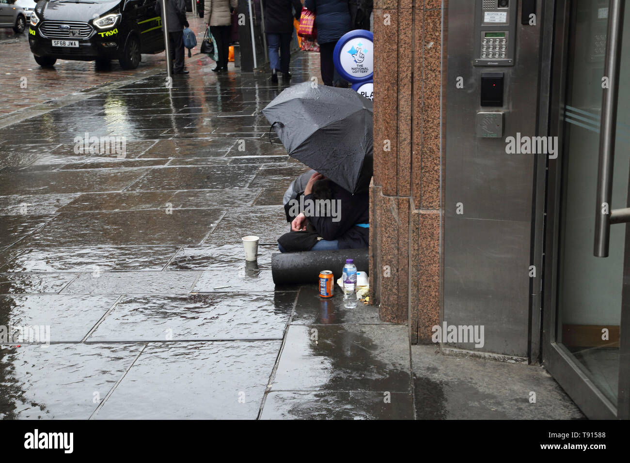 Glasgow Scotland Homeless Woman with her Staffordshire Bull Terrier Dog in the Rain - Stock Image