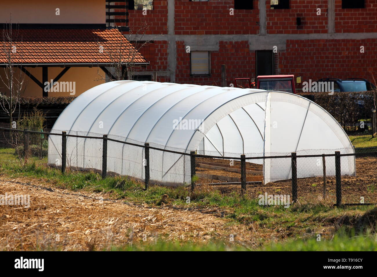 New backyard garden greenhouse made of metal pipes and white opaque nylon placed in local garden behind family house surrounded with dry soil - Stock Image