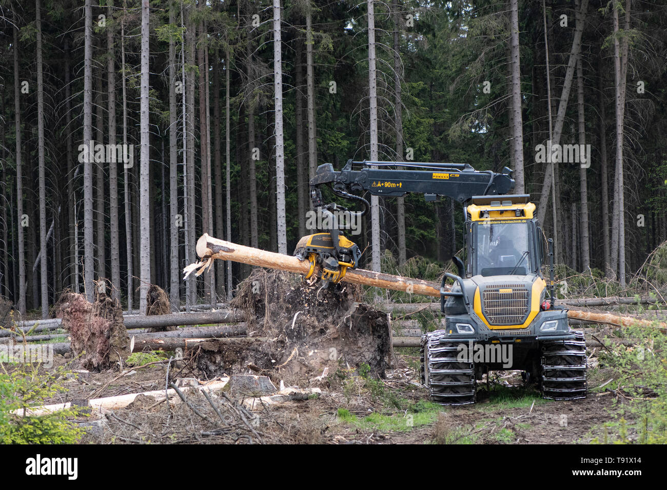 Sankt Ottilien, Germany. 16th May, 2019. A harvester (wood harvester) debarks a spruce trunk on a forest area in the Söhrewald that is severely affected by the windthrow. After the drought of 2018, trees are weakened and susceptible to bark beetle infestation. Credit: Swen Pförtner/dpa/Alamy Live News - Stock Image