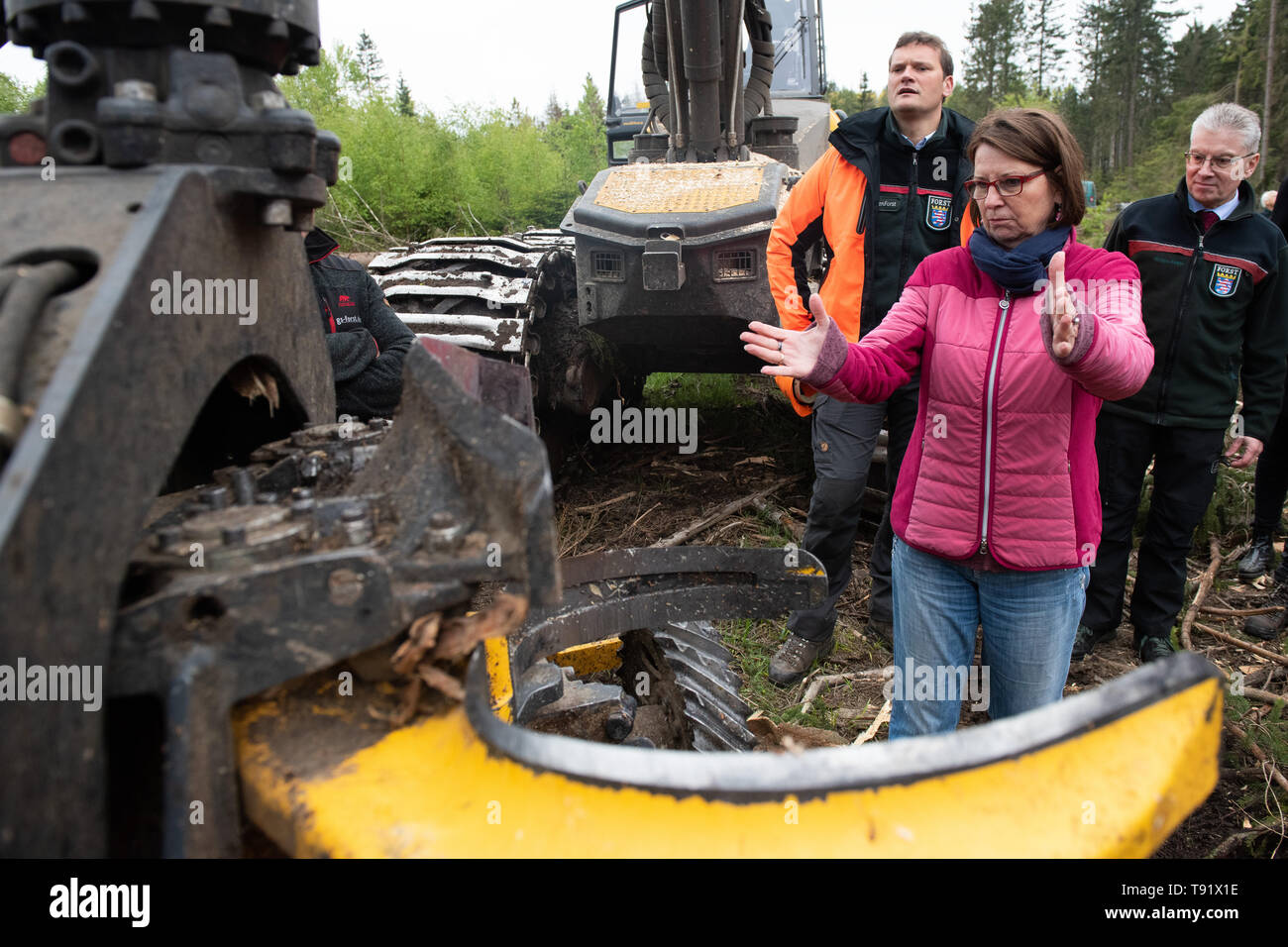 Sankt Ottilien, Germany. 16th May, 2019. Priska Hinz (Bündnis 90/Die Grünen), Minister of the Environment of Hesse, stands in front of the debarking head of a harvester (wood harvester) during a visit to a forest area in the Söhrewald which has been severely affected by the windthrow. After the drought of 2018, trees are weakened and susceptible to bark beetle infestation. Credit: Swen Pförtner/dpa/Alamy Live News Stock Photo
