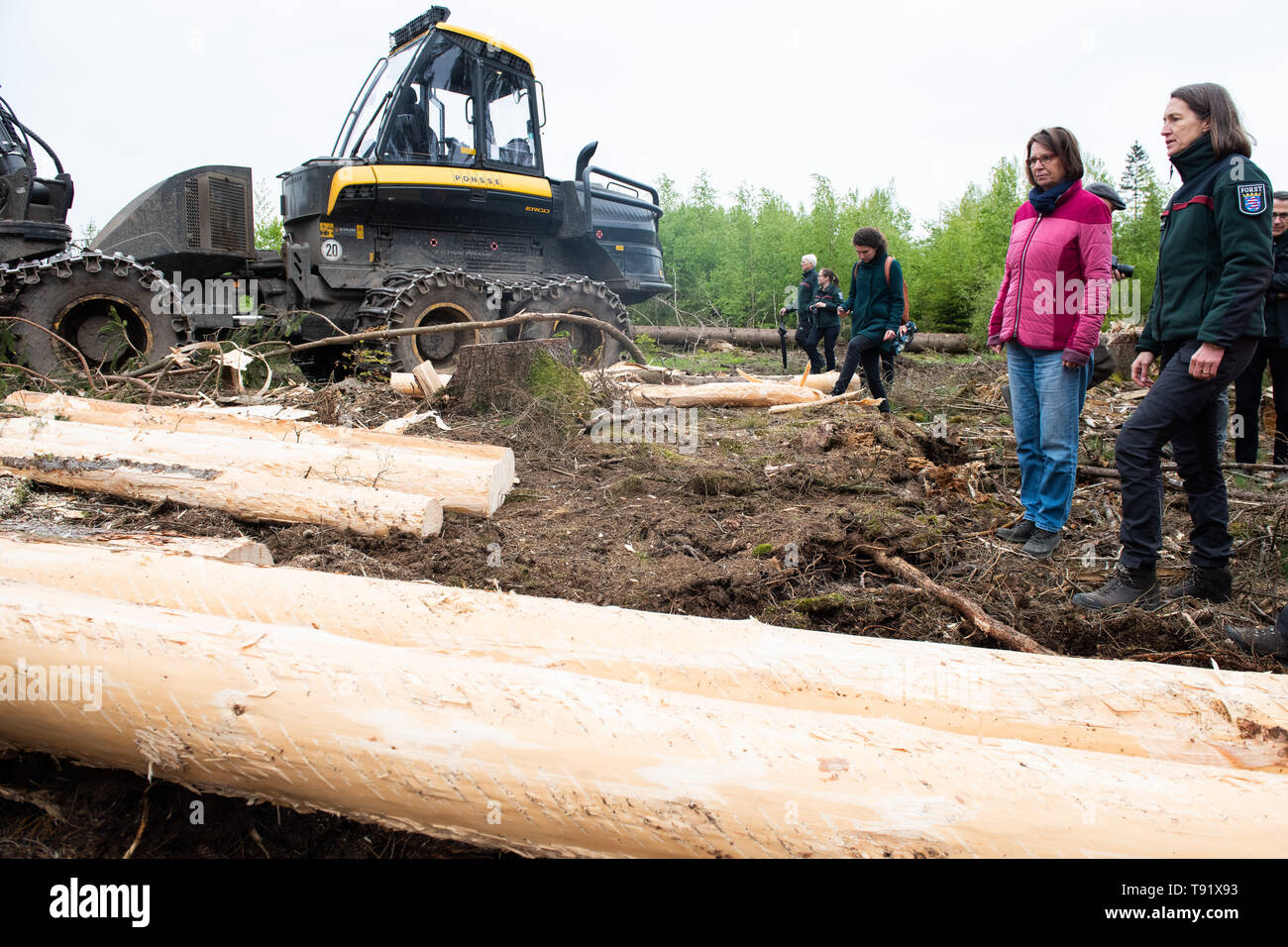 Sankt Ottilien, Germany. 16th May, 2019. Priska Hinz (Bündnis 90/Die Grünen), Minister of the Environment of Hesse, and Petra Westphal (r), head of the forestry office in Melsungen, stand next to a harvester (wood harvester) and debarked spruce trunks during a visit to a forest area in the Söhrewald which has been severely affected by the windthrow. After the drought of 2018, trees are weakened and susceptible to bark beetle infestation. Credit: Swen Pförtner/dpa/Alamy Live News - Stock Image