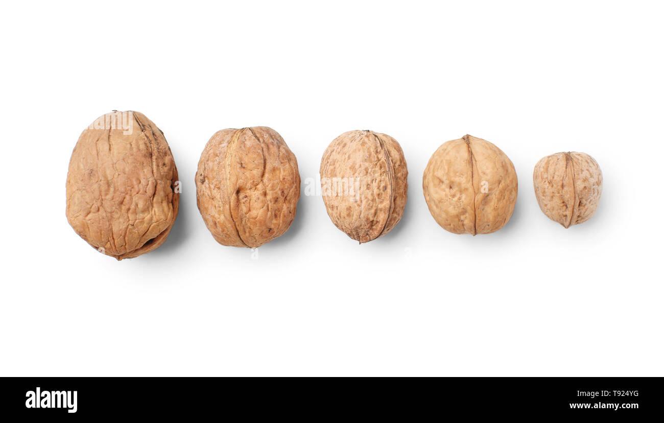 Unpeeled walnuts on white background - Stock Image