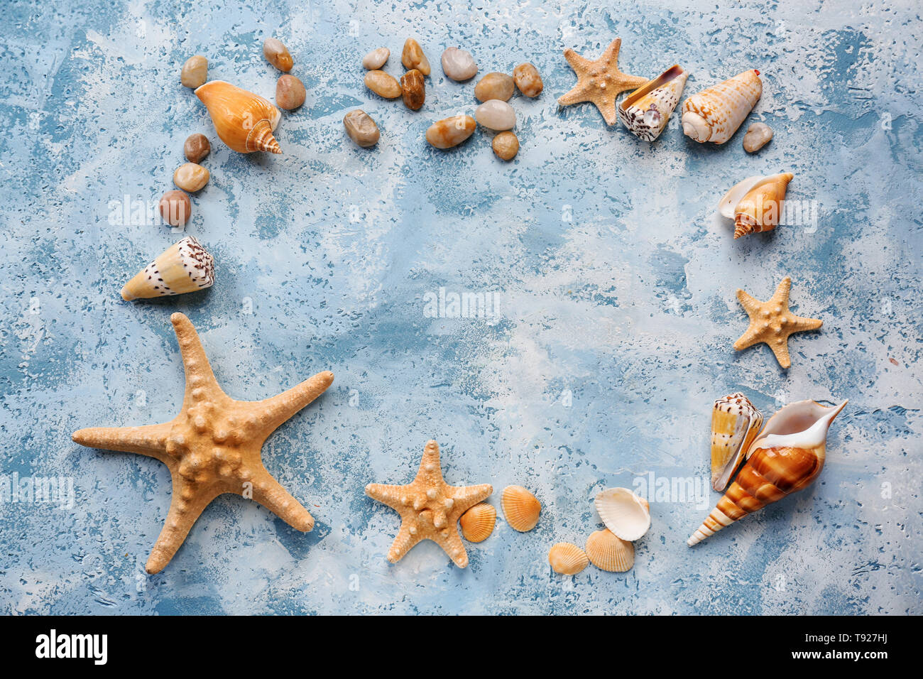 Composition with different sea shells and starfishes on color background - Stock Image