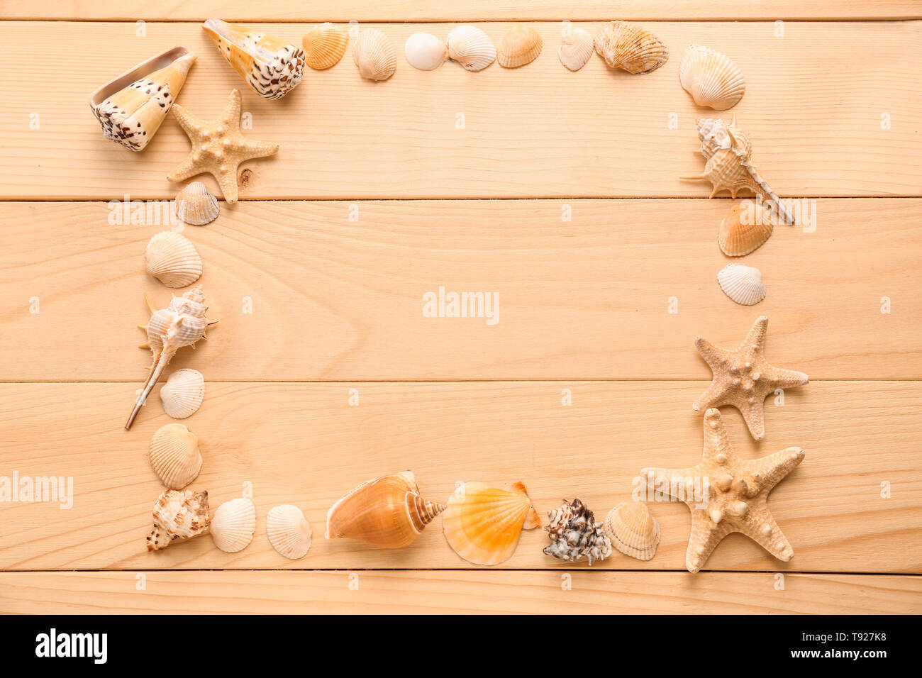 Frame made of different sea shells and starfishes on wooden background - Stock Image