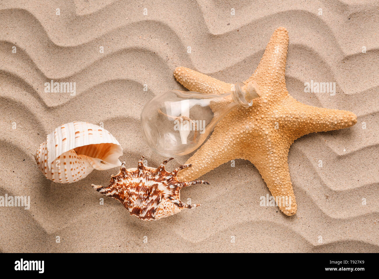 Sea shells with starfish and glass bottle on sand - Stock Image