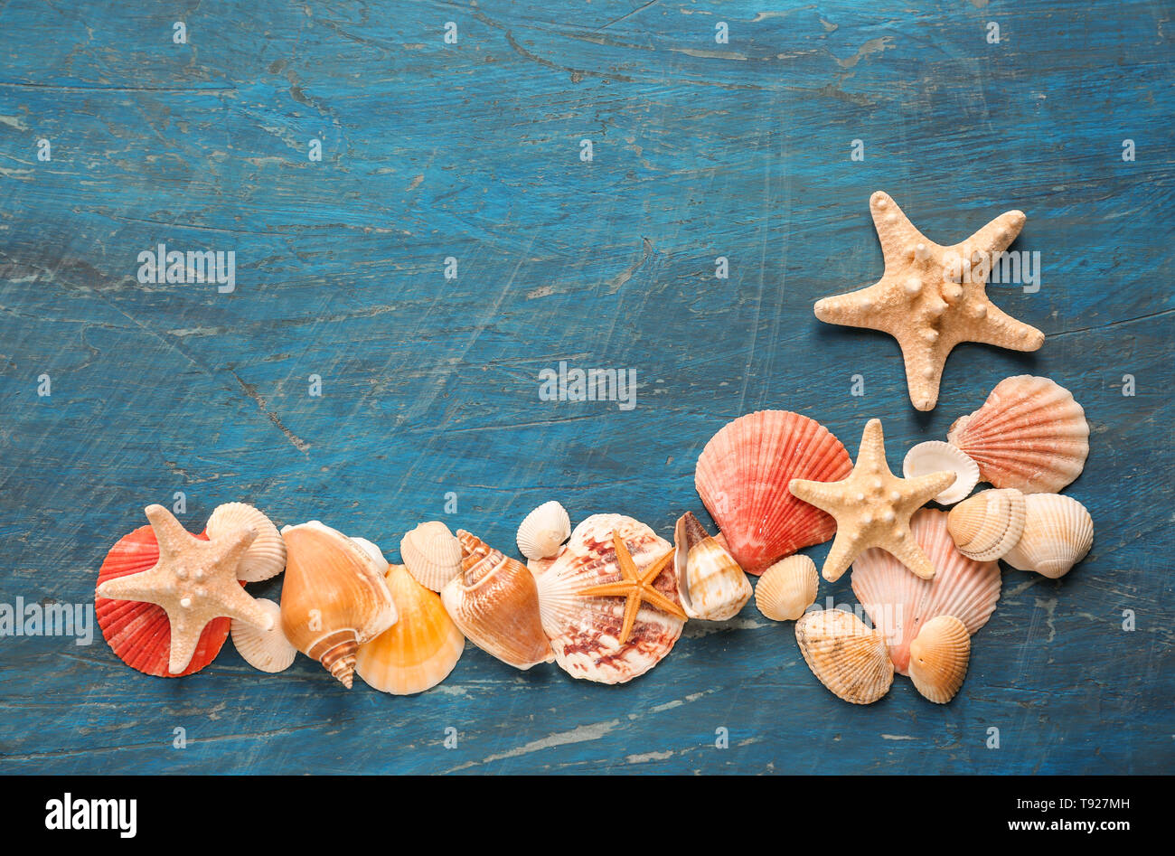 Different sea shells with starfishes on color background - Stock Image