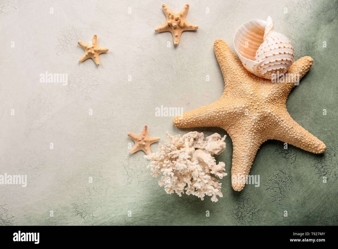 Starfishes with sea shell and coral on color background - Stock Image