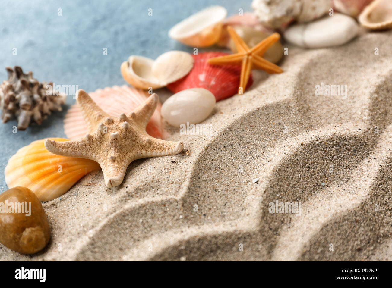 Different sea shells, starfish and sand on color background - Stock Image