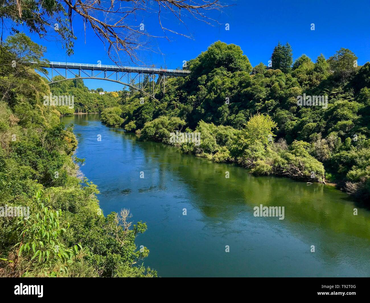 Victoria Bridge, a hinged braced arch bridge in Cambridge, New Zealand - Stock Image