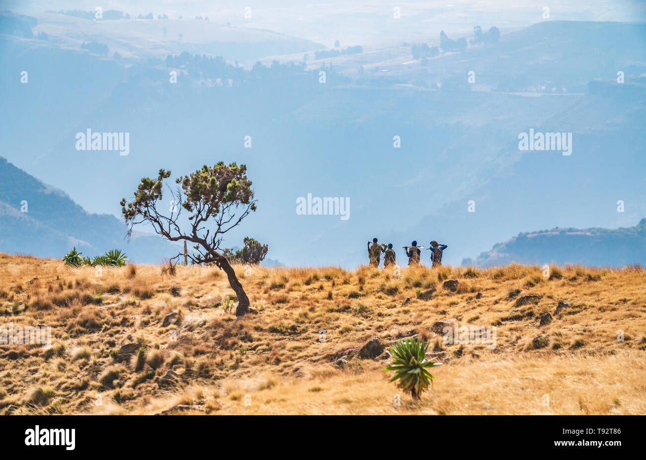 Local scouts walking throug fantastic landscape in the Simien mountains - Stock Image