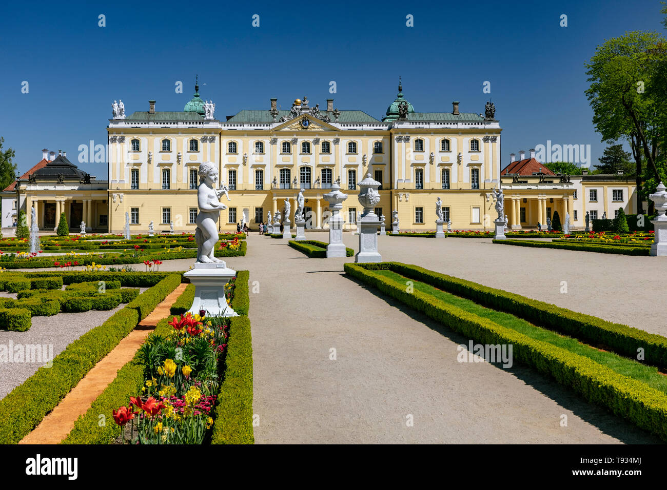 The Branicki Baroque palace and Medical University in Bialystok, Podlasie, Poland - Stock Image