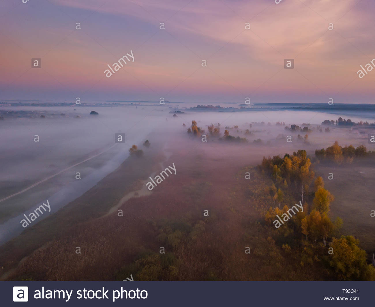 Forest in the fog at sunrise. View from drone. - Stock Image