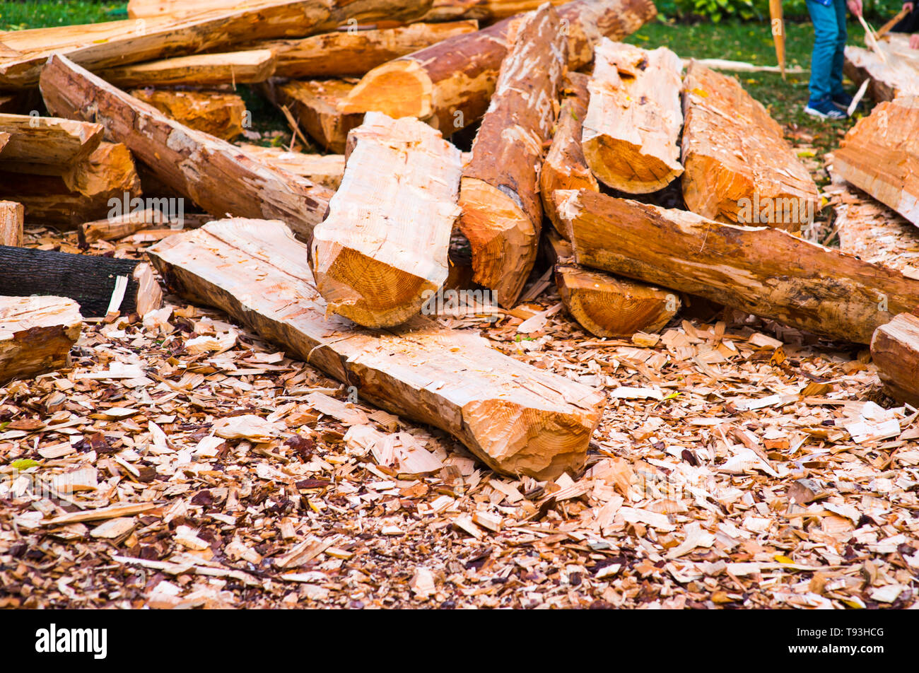 Wood chips. Natural bright yellow colored wooden shavings for protecting plants on flower beds and lawns. With a flower bed fragment. Alternative to a Stock Photo