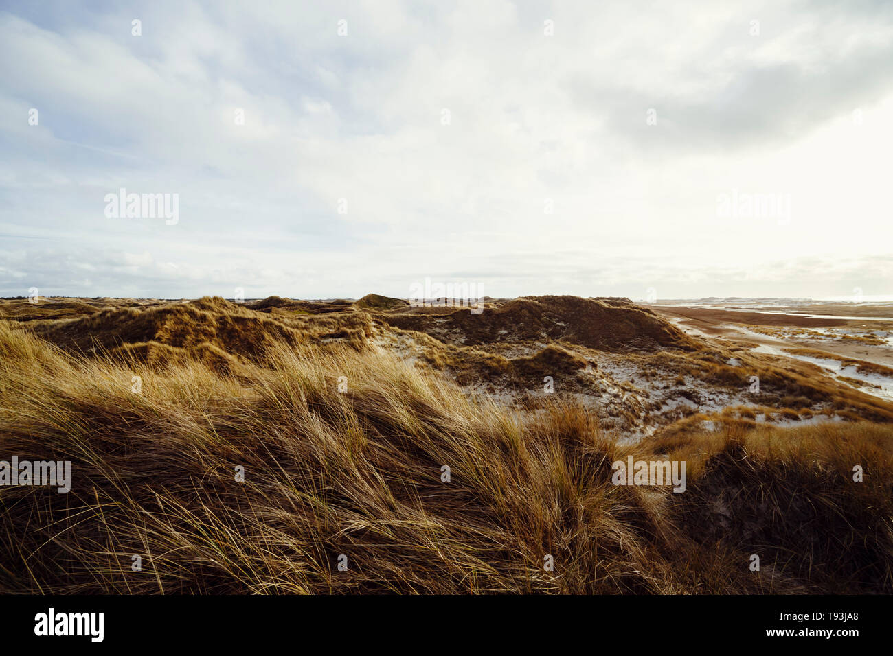 Beautiful atmosphere of the island of Amrum. Impressive dunes with light cloudy sky. The sun almost shines through. North Frisia, Schleswig-Holstein,  - Stock Image