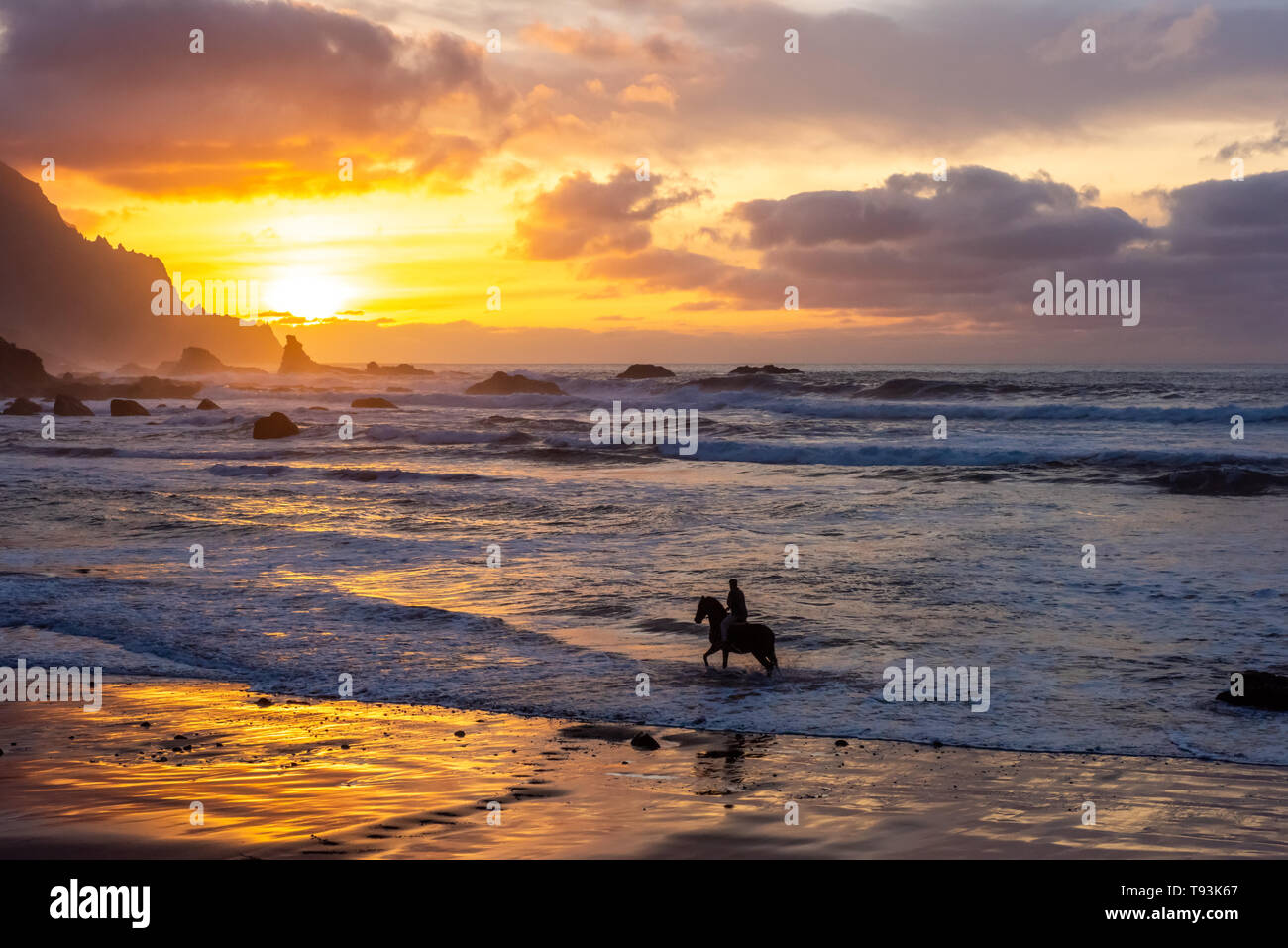 Horseriding at ocean beach on sunset background. Canary island. - Stock Image