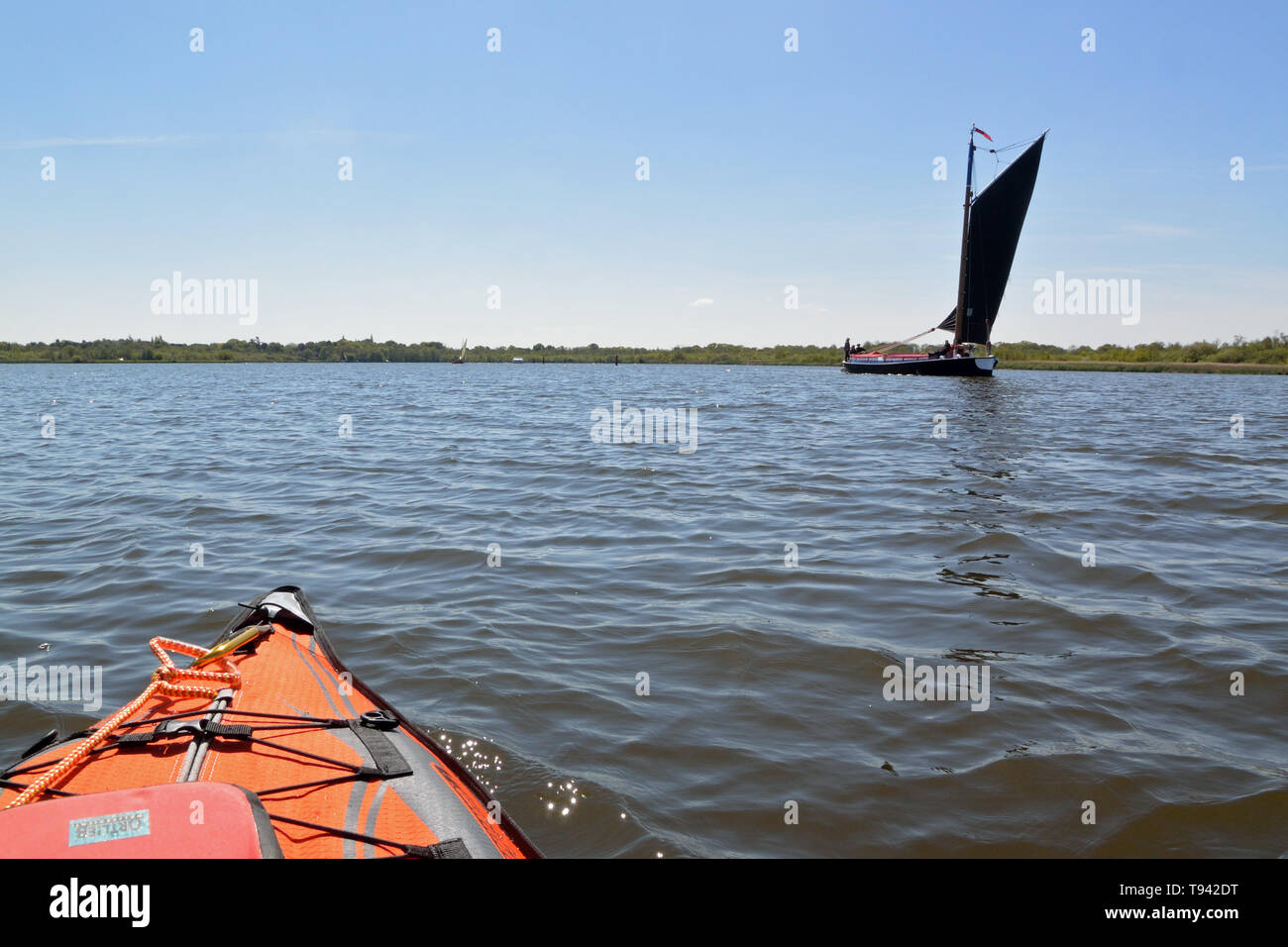 Historic trading wherry Albion under sail on Barton Broad, Broads National Park, Norfolk, UK Stock Photo