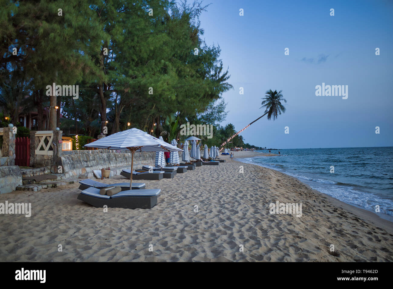 Sunbeds with parasol on a nice Long beach in the evening, surrounded by palm trees in Phu Quoc, Vietnam - Stock Image