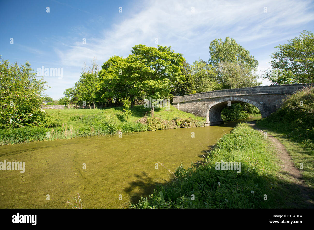 A view of a disused section of the Lancaster Canal and bridge number 166 and towpath near the village of Crooklands in Cumbria. Cumbria, England UK GB - Stock Image