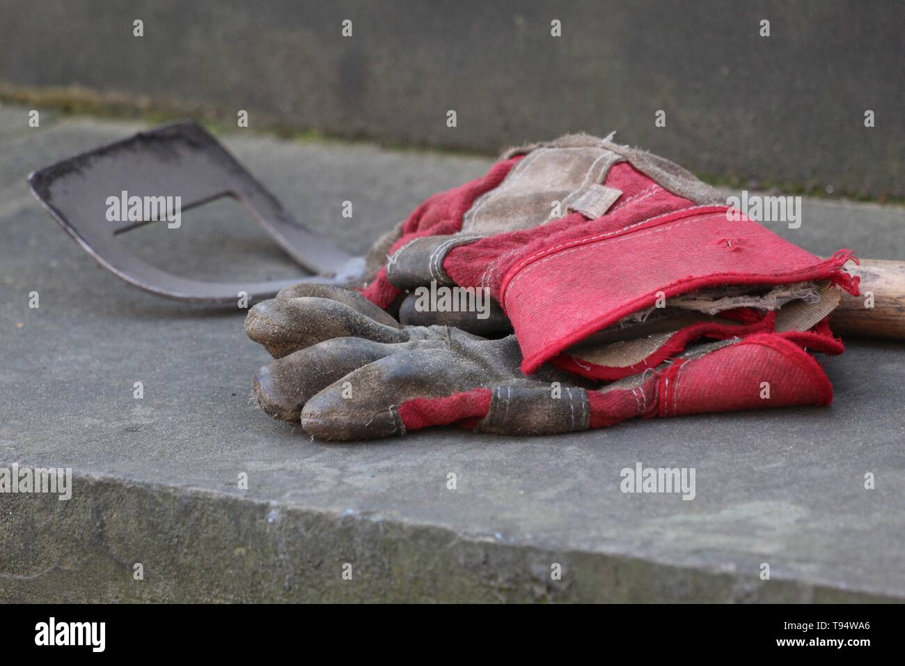 Gardening Gloves and Tool - Stock Image