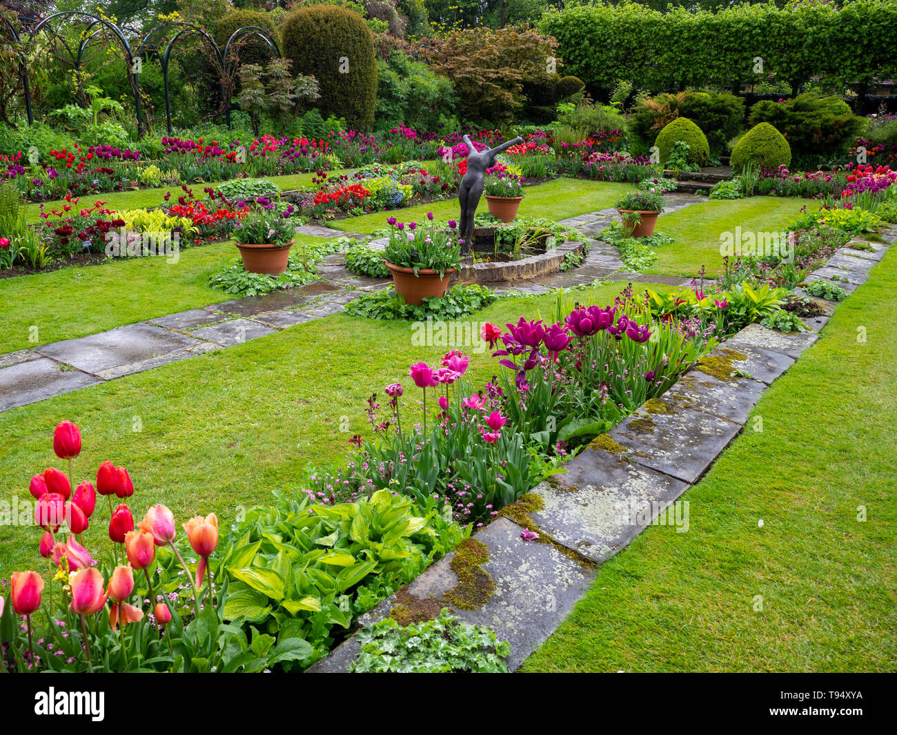 Chenies Manor House Sunken garden in May with vivid tulip varieties on a showery afternoon; plant borders, wet paving, ornamental pond and statue.. Stock Photo