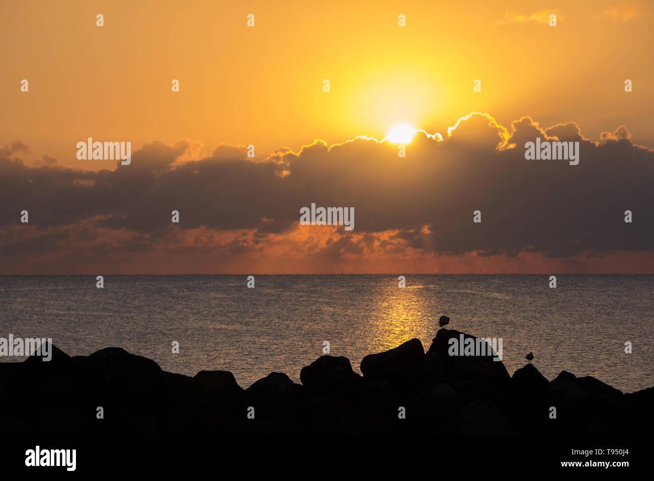 Sonnenaufgang in Kiel Schilksee, Schleswig-Holstein, Deutschland / sunrise in kiel schilksee, schleswig-holstein, germany - Stock Image