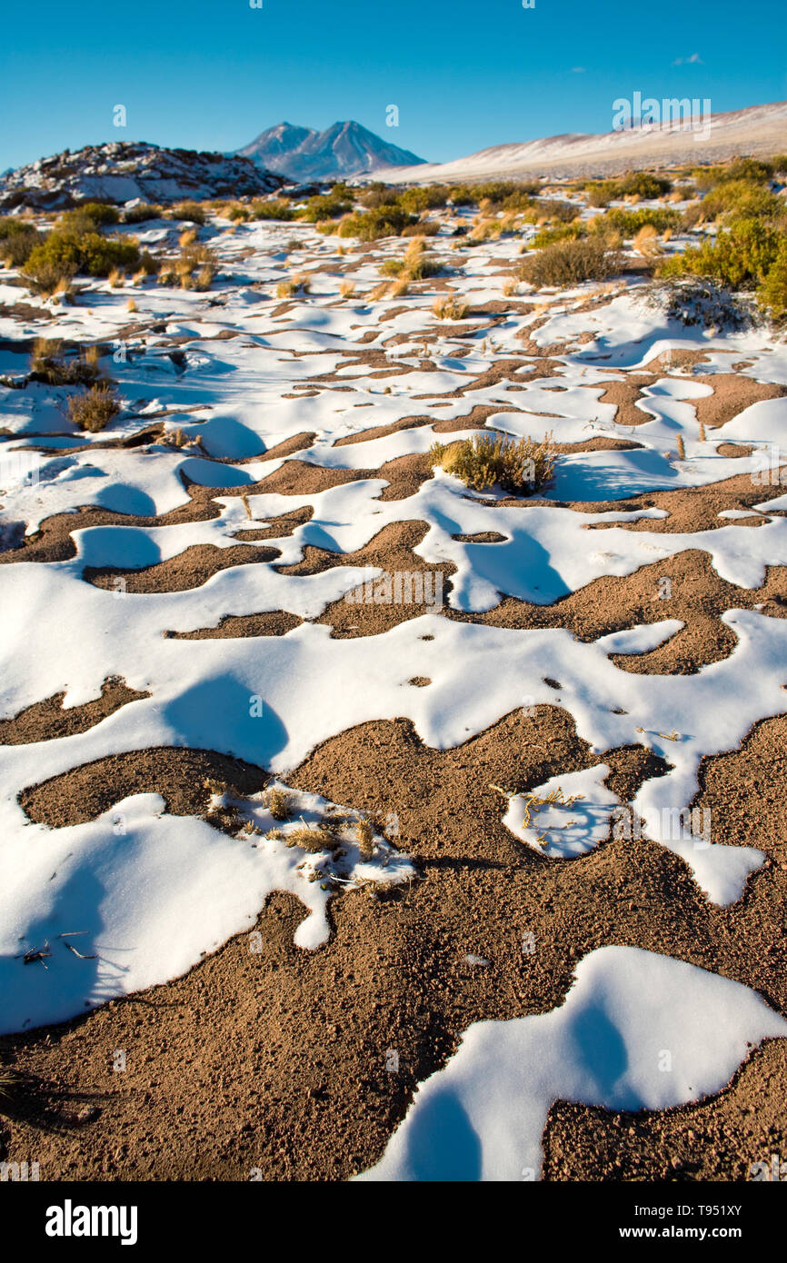 Snow in the Altiplano (high Andean Plateau), Los Flamencos National Reserve, Atacama desert, Chile, South America - Stock Image