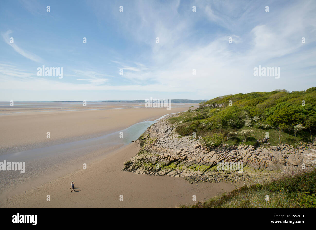 A view of an estuary channel and two people walking close to Jenny Brown's Point at low tide near the village of Silverdale close to the edge of Morec - Stock Image
