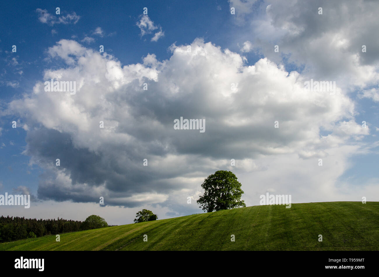 weather in the alpine upland - Stock Image