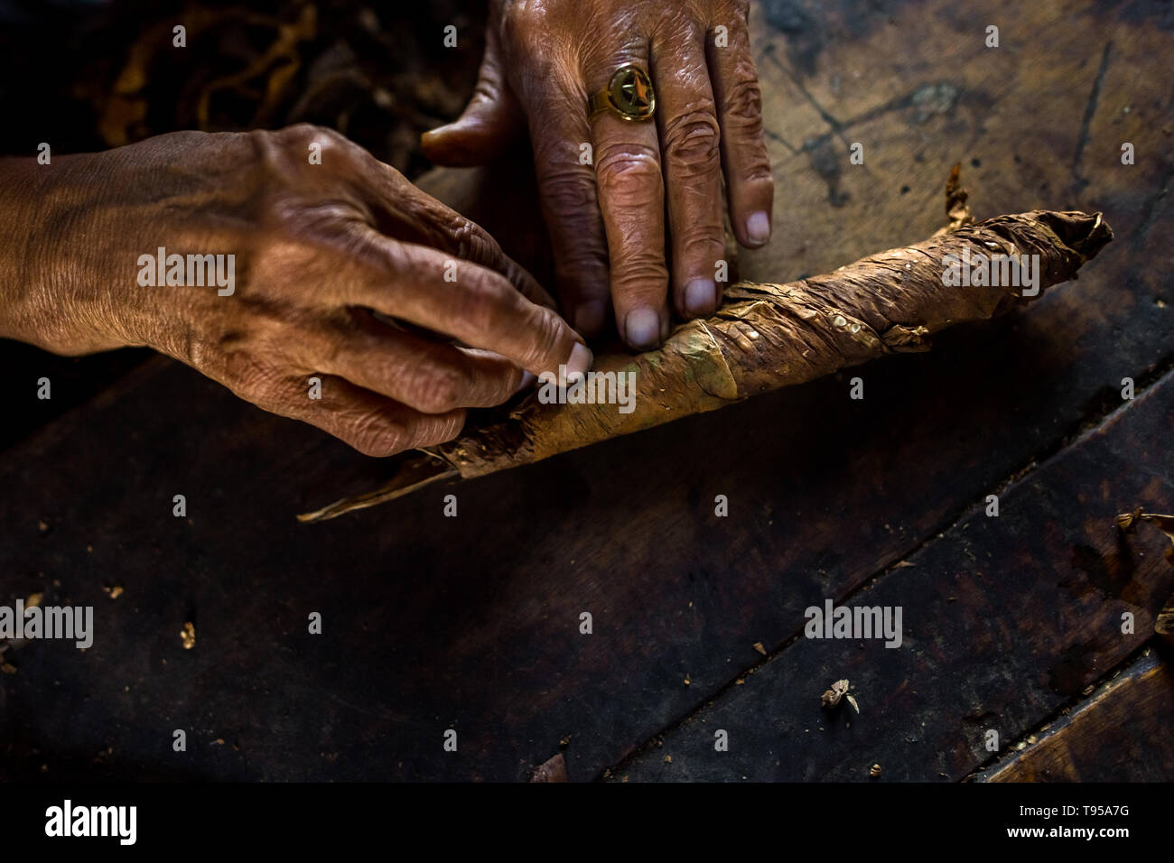 Hands of Laura Peña, a 67-years-old Salvadoran woman, are seen while rolling tobacco leaves to make handmade cigars in Suchitoto, El Salvador. - Stock Image