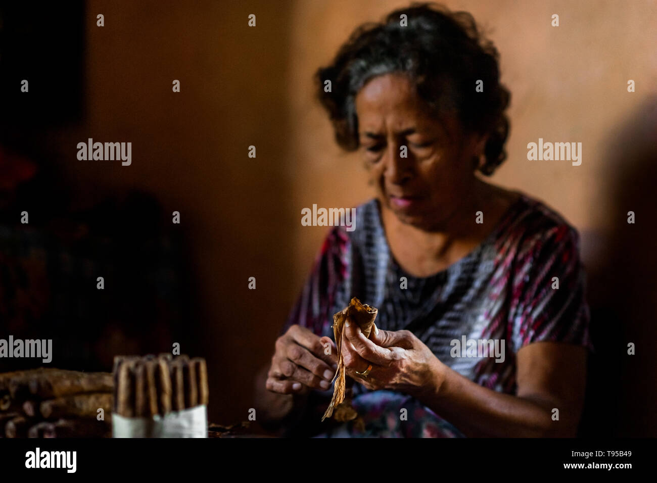 Laura Peña, a 67-years-old Salvadoran woman, rolls tobacco leaves to make handmade cigars in her house in Suchitoto, El Salvador. - Stock Image
