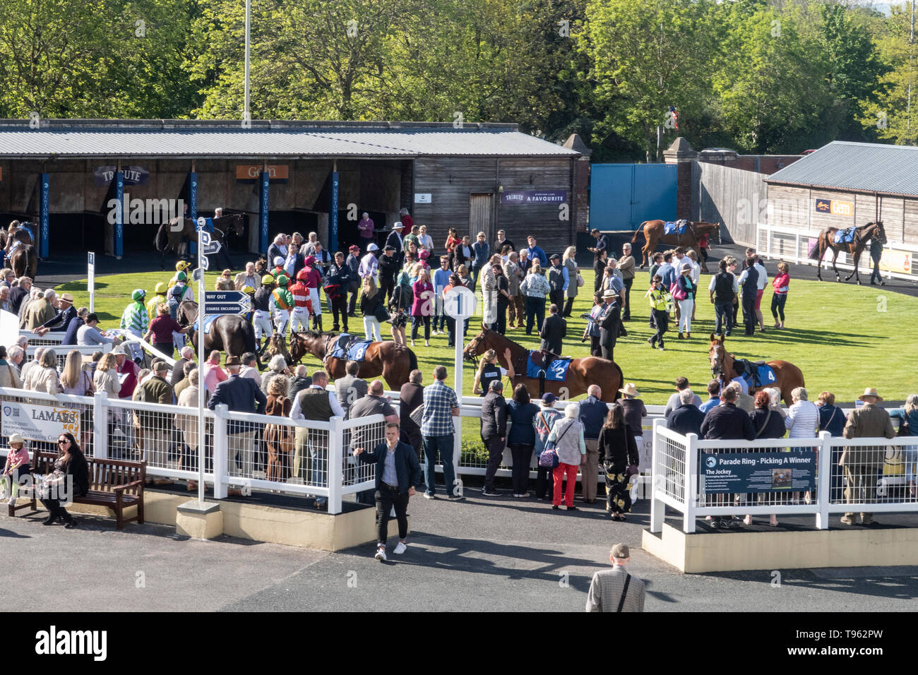 The Parade Ring at Newton Abbot horse racing course, Devon, UK. Stock Photo