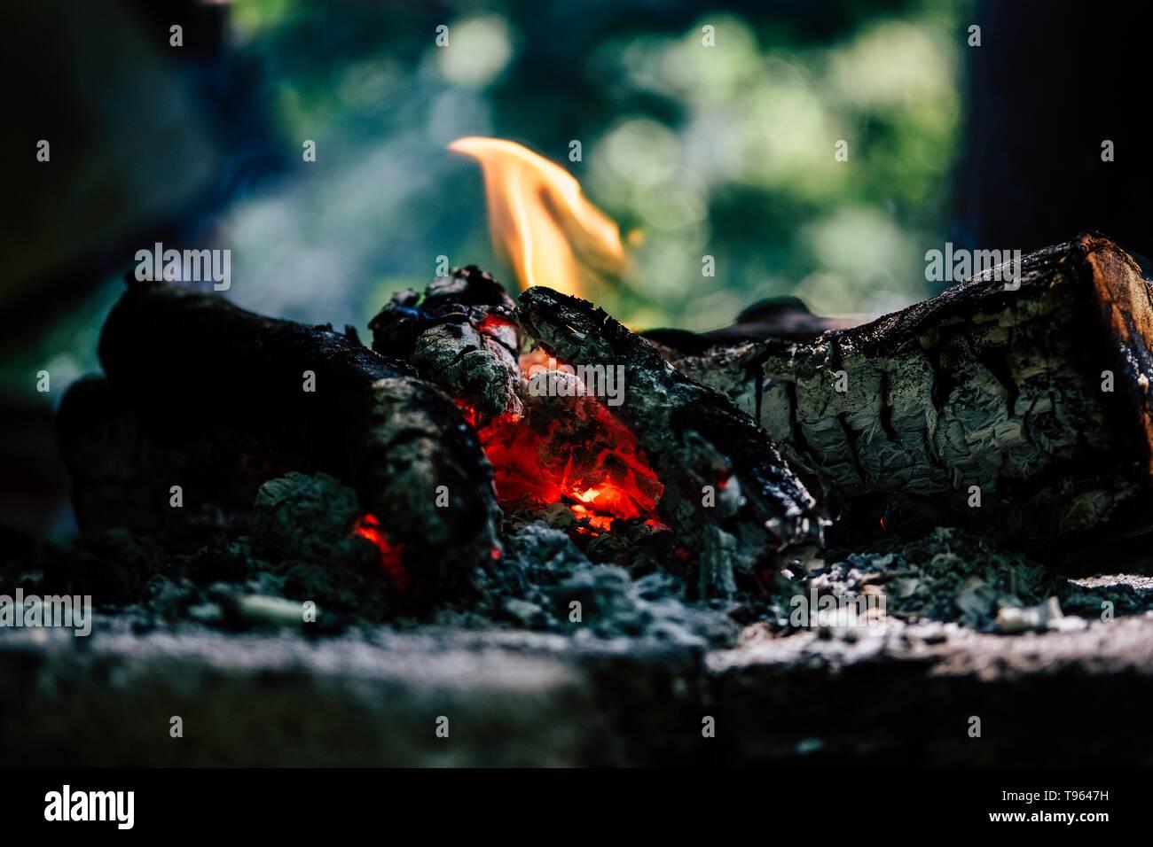 Closeup shot of burning logs indoors - Stock Image
