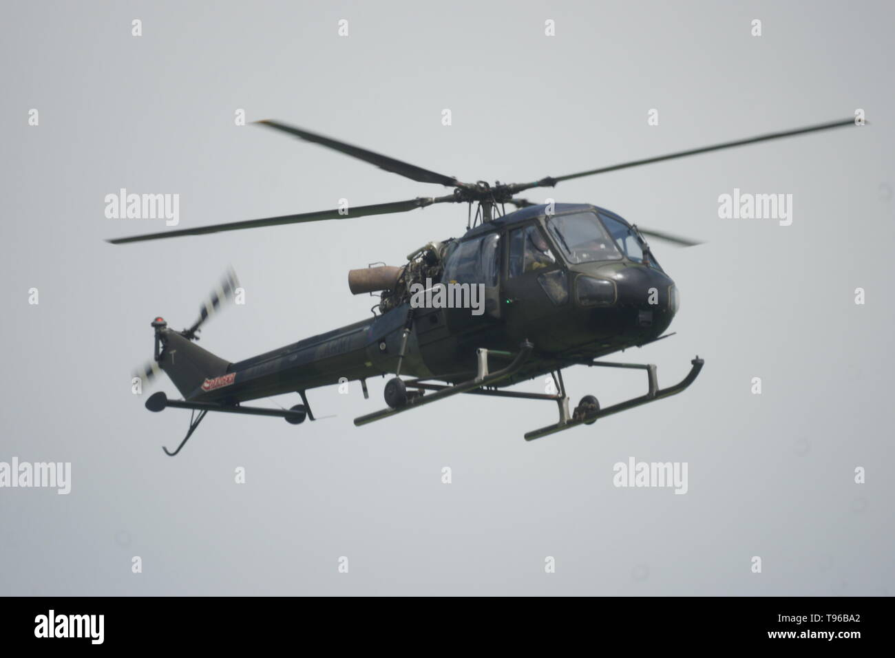Westland Scout military helicopter - Stock Image