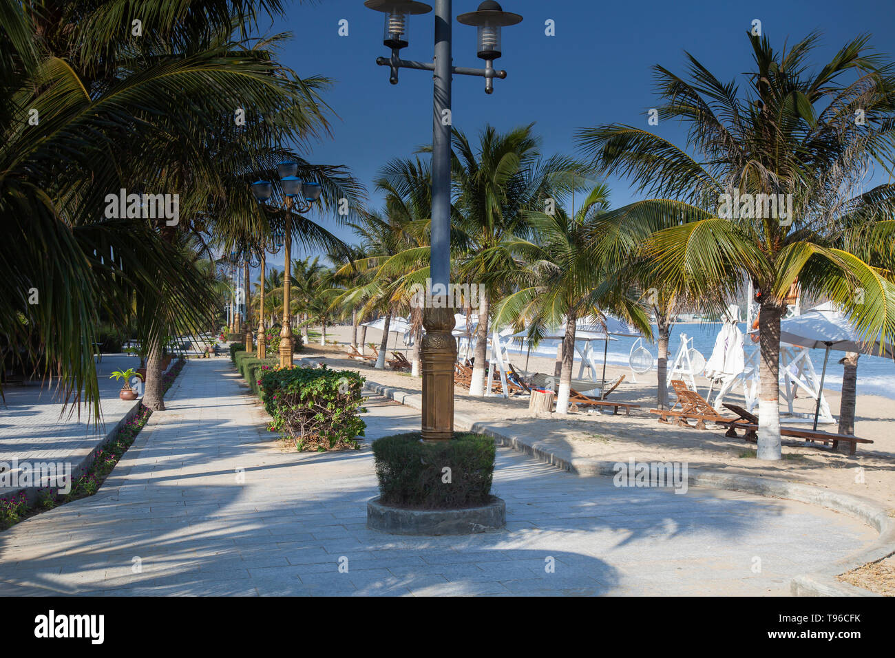 Beach promenade with palms at TTC Resort, South China Sea,Phan Rang, Ninh Thuan,Vietnam, Asia - Stock Image