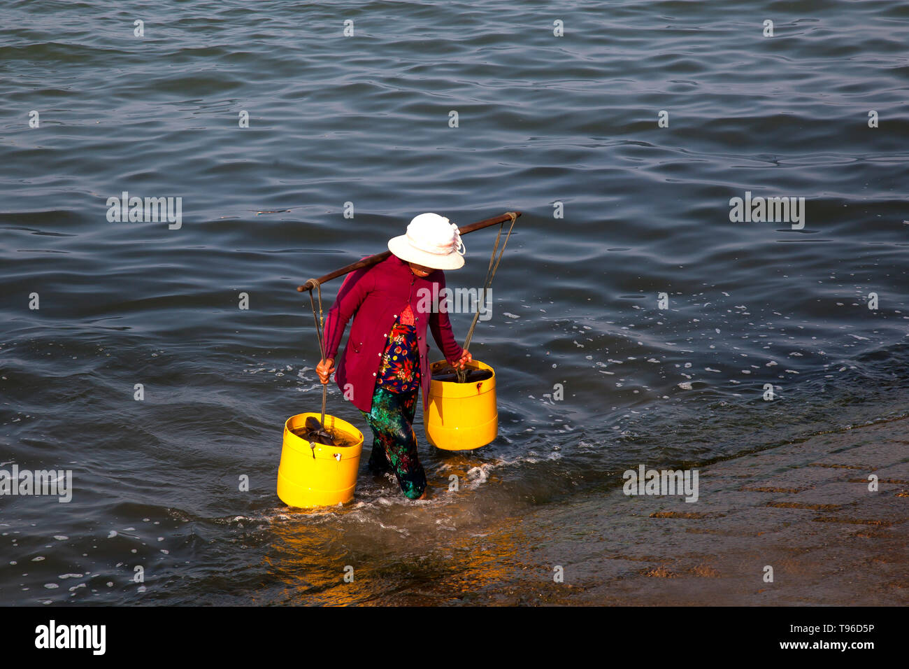 Vietnamese woman carries freshly caught fish from fisherboat ashore, Cana,south china sea,Vietnam,asia - Stock Image