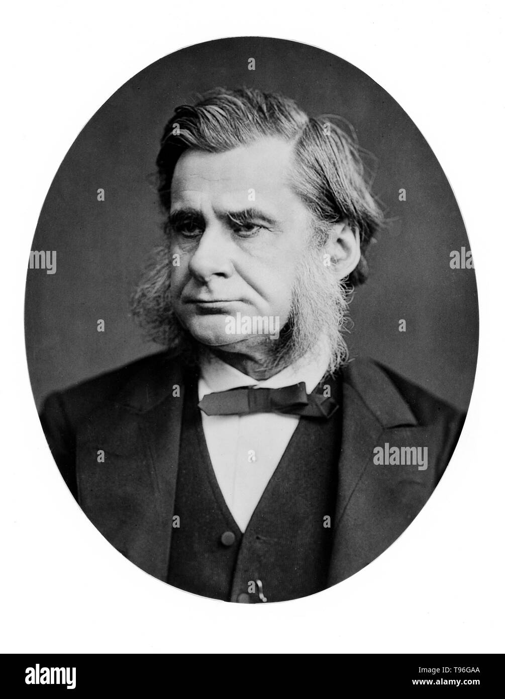 Thomas Henry Huxley (May 4, 1825 - June 29, 1895) was an English biologist, known as 'Darwin's Bulldog' for his advocacy of Charles Darwin's theory of evolution. Huxley's famous 1860 debate with Samuel Wilberforce was a key moment in the wider acceptance of evolution, and in his own career. Huxley was slow to accept some of Darwin's ideas, such as gradualism, and was undecided about natural selection, but despite this he was wholehearted in his public support of Darwin. - Stock Image