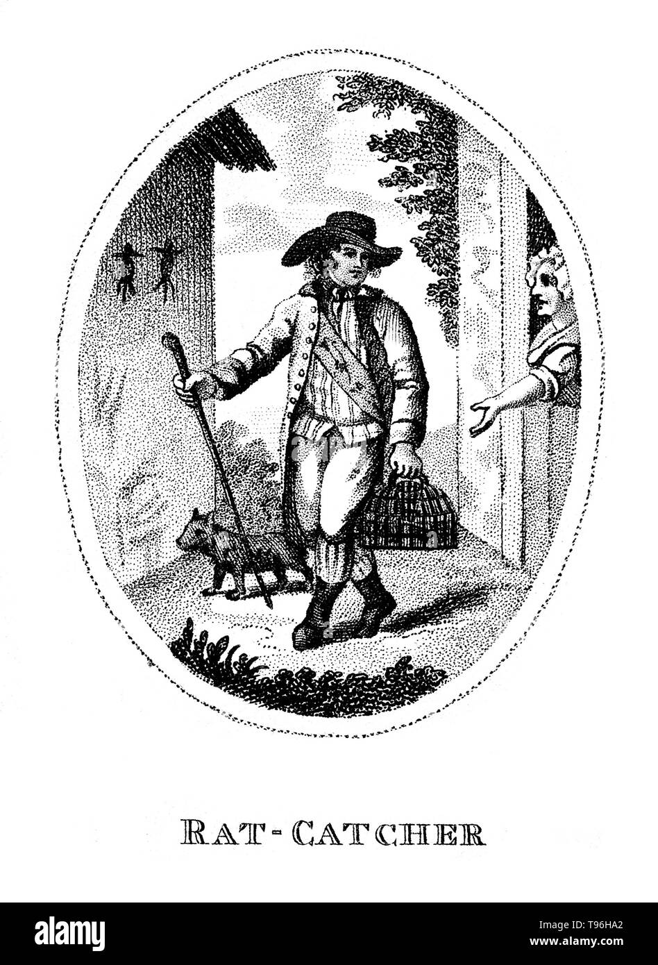 A rat-catcher and his dog; to the right a woman looks on. A rat-catcher is a person who practices rat-catching as a professional form of pest control. Keeping the rat population under control was practiced in Europe to prevent the spread of diseases, most notoriously the Black Plague, and to prevent damage to food supplies. In modern developed countries, such a professional is otherwise known as a pest control operative or pest technician. Rat-catchers may attempt to capture rats themselves, or release ratters, animals trained or naturally skilled at catching them. They may also set a rat trap - Stock Image