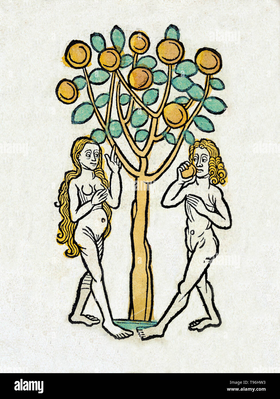 Adam and Eve, according to the creation myth of Abrahamic religions, were the first man and woman. The story of Adam and Eve is central to the belief that God created human beings to live in a Paradise on earth, although they fell away from that state and formed the present world full of suffering and injustice. It provides much of the scriptural basis for the doctrine of Original Sin, an important belief in Christianity, although not shared by Judaism or Islam. The Hortus Sanitatis (Garden of Health), the first natural history encyclopedia, was published by Jacob Meydenbach in Germany, 1491.  - Stock Image
