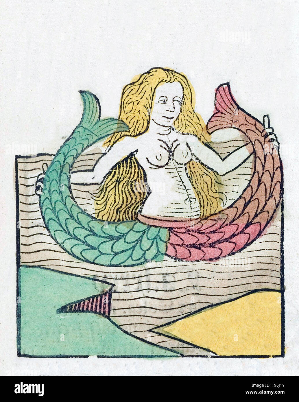A mermaid is a legendary aquatic creature with the upper body of a female human and the tail of a fish. Mermaids appear in the folklore of many cultures worldwide, including the Near East, Europe, Africa and Asia. Mermaids are sometimes associated with perilous events such as floods, storms, shipwrecks and drownings. In other folk traditions (or sometimes within the same tradition), they can be benevolent or beneficent, bestowing boons or falling in love with humans. The Hortus Sanitatis (Garden of Health), the first natural history encyclopedia, was published by Jacob Meydenbach in Germany, 1 - Stock Image