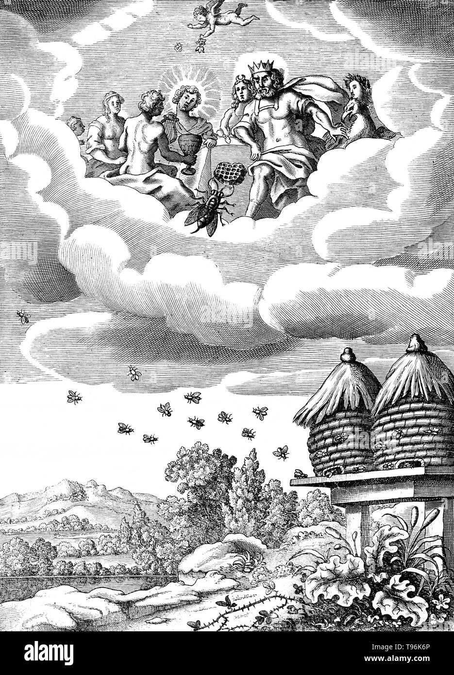 Above, a bee is working on a honeycomb before the critical eyes of a king and his entourage in the clouds, below, bees are flying to and fro two wicker beehives; illustration of a fable. A beehive is an enclosed structure man-made in which some honey bee species of the subgenus Apis live and raise their young. Several species of Apis live in colonies, but for honey production the western honey bee (Apis mellifera) and the eastern honey bee (Apis cerana) are the main species kept in hives. There are four basic styles of traditional beehive; mud hives, clay/tile hives, skeps and bee gums. The te - Stock Image