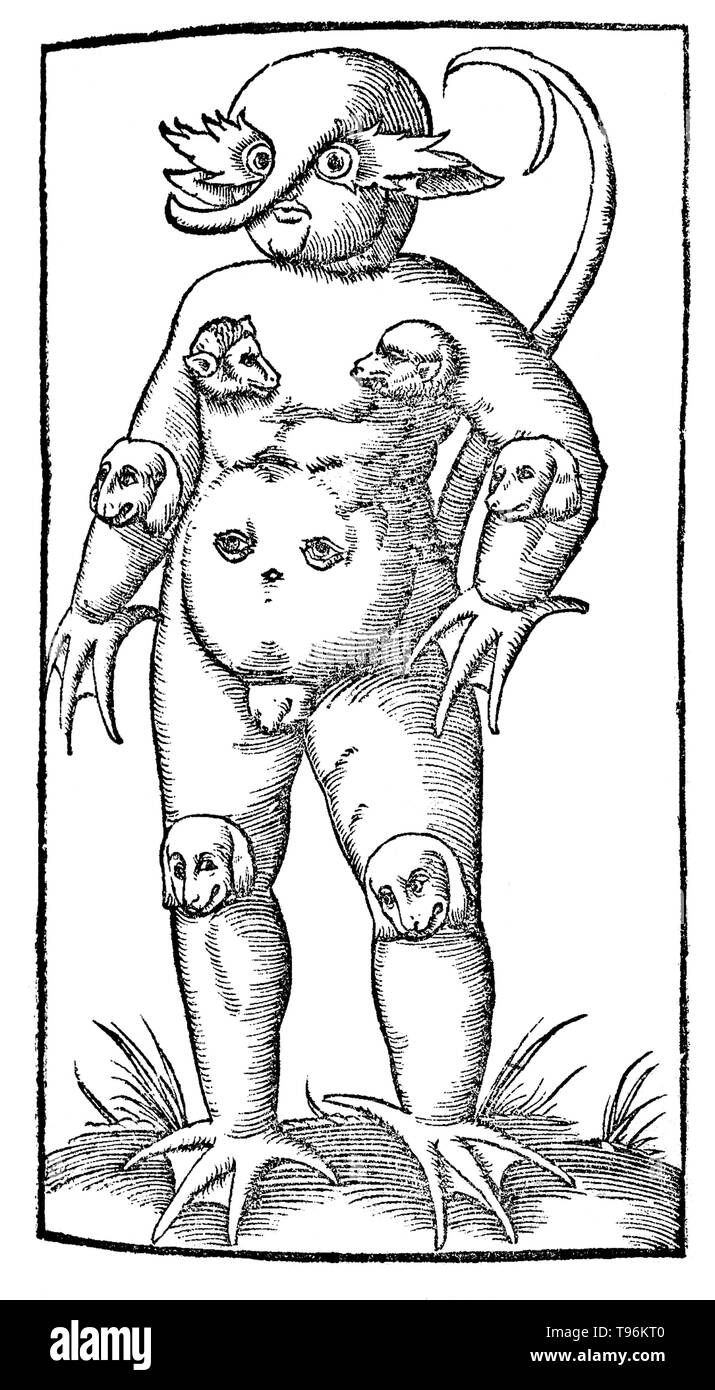 The Monster of Krakow (or Cracow), was a deformed child reportedly born in 1543 or 1547 (as reported by Sebastian Münster, Cosmographia) with barking dogs' heads mounted on its elbows, chest and knees - the standard identifier of demonic handiwork. It reputedly died four hours after its birth, but not without warning, 'Watch, the Lord cometh.' By the time this monster was born, Martin Luther and Philipp Melanchthon had published pamphlets about other monsters engendered by divine displeasure with the papacy. Convictions that heretical beliefs were on the rise likely played a role in the appear - Stock Image