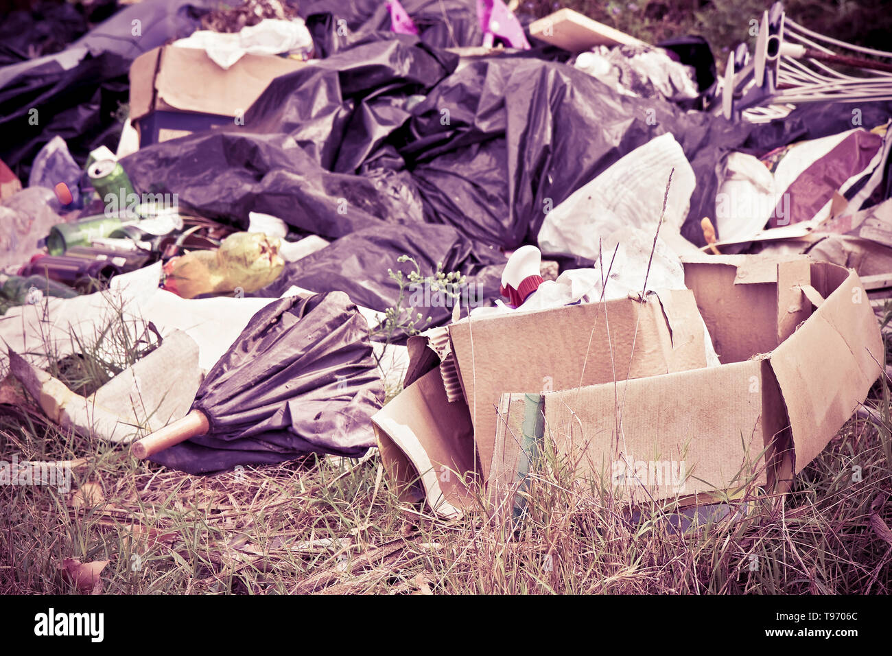 Illegal dumping with bottles, boxes and plastic bags abandoned in nature - Stock Image