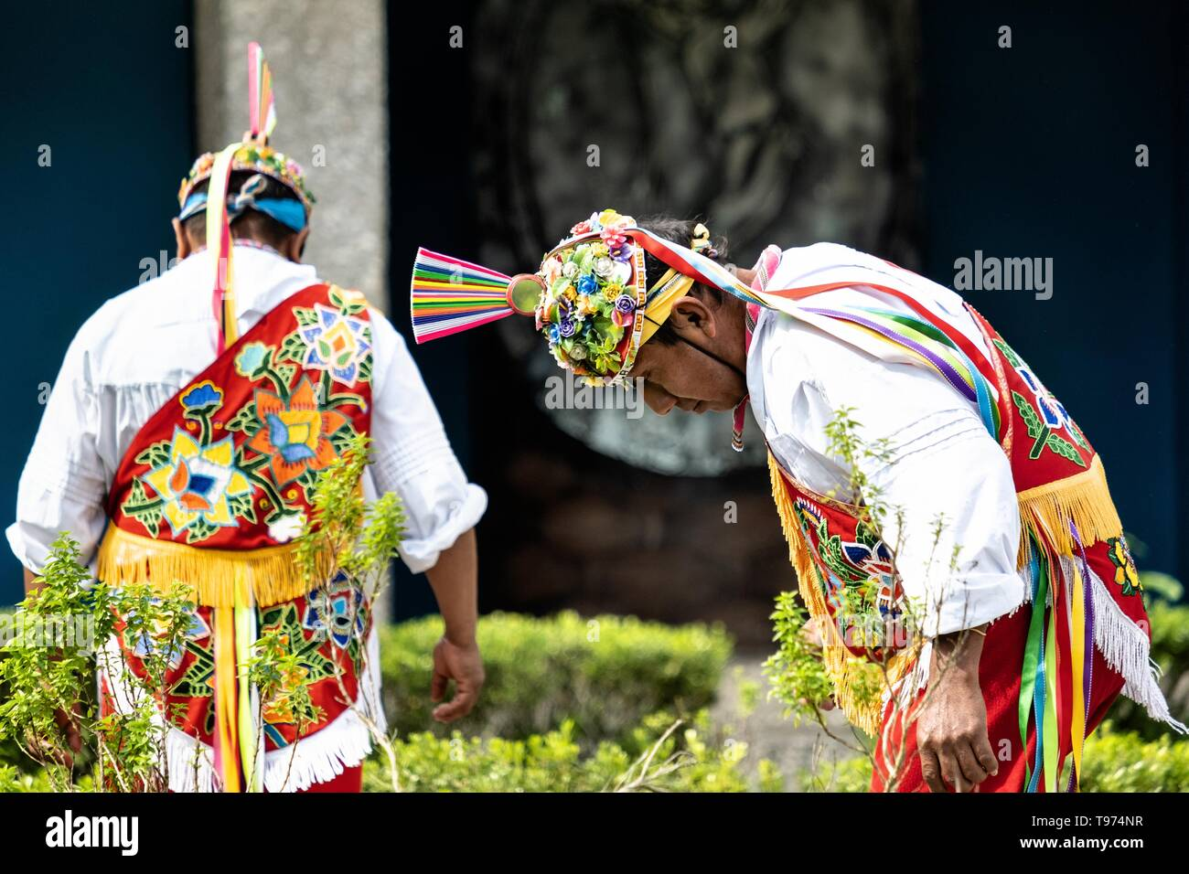 Voladores perform the sacred ritual before climbing a pole for the ceremonial dance in the Parque Takilhsukut at the pre-Columbian archeological complex of El Tajin in Tajin, Veracruz, Mexico. The Danza de los Voladores is a indigenous Totonac ceremony involving five participants who climb a thirty-meter pole. Four of these tie ropes around their waists and wind the other end around the top of the pole in order to descend to the ground. The fifth participant stays at the top of the pole, playing a flute and a small drum. The ceremony has been inscribed as a Masterpiece of the Oral and Intangib - Stock Image