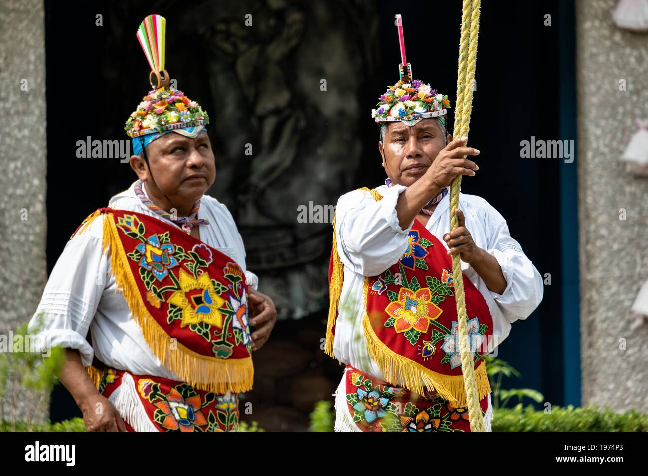 A Voladores prepare to climb the thirty-meter pole to perform the sacred ceremonial dance in the Parque Takilhsukut at the pre-Columbian archeological complex of El Tajin in Tajin, Veracruz, Mexico. The Danza de los Voladores is a indigenous Totonac ceremony involving five participants who climb a thirty-meter pole. Four of these tie ropes around their waists and wind the other end around the top of the pole in order to descend to the ground. The fifth participant stays at the top of the pole, playing a flute and a small drum. The ceremony has been inscribed as a Masterpiece of the Oral and In - Stock Image