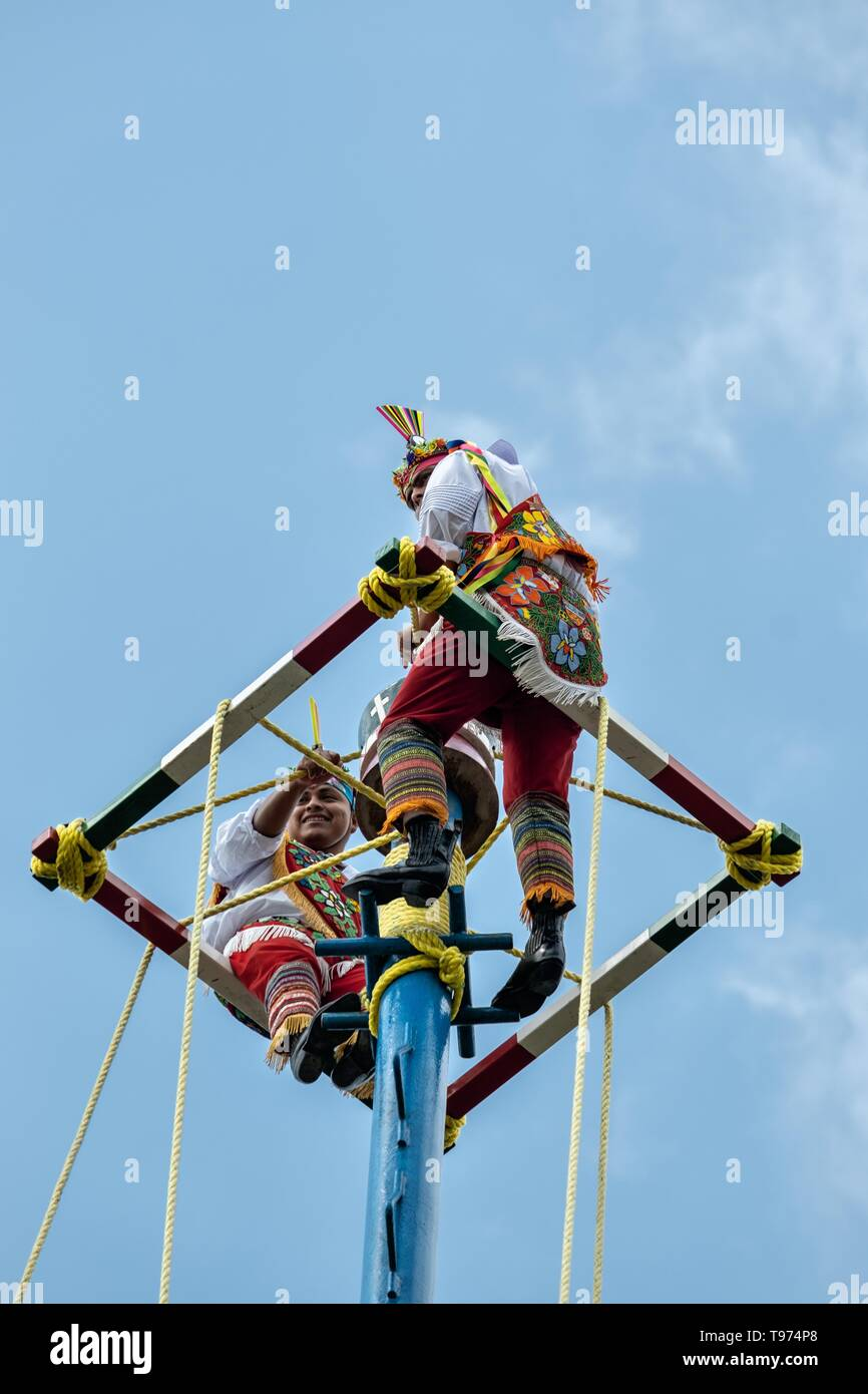 A Volador climbs the thirty-meter pole to perform the sacred ceremonial dance in the Parque Takilhsukut at the pre-Columbian archeological complex of El Tajin in Tajin, Veracruz, Mexico. The Danza de los Voladores is a indigenous Totonac ceremony involving five participants who climb a thirty-meter pole. Four of these tie ropes around their waists and wind the other end around the top of the pole in order to descend to the ground. The fifth participant stays at the top of the pole, playing a flute and a small drum. The ceremony has been inscribed as a Masterpiece of the Oral and Intangible Her - Stock Image