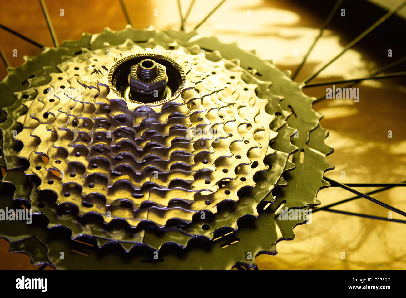 close up of a 11 speed mountain bike cassette mounted on the rear hub - Stock Image