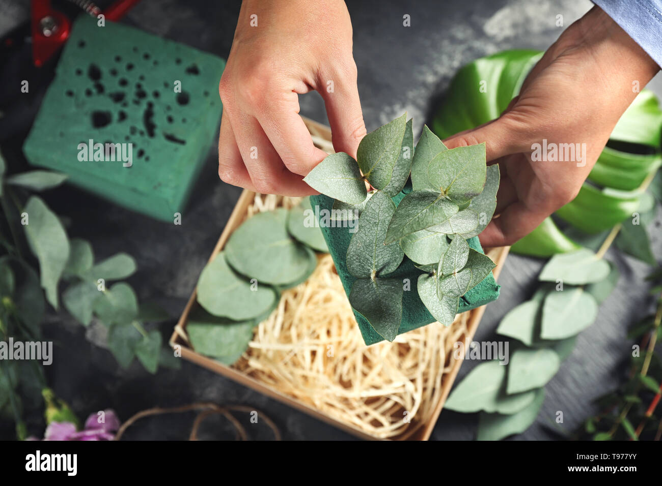 Florist preparing gift box with green branches, closeup - Stock Image