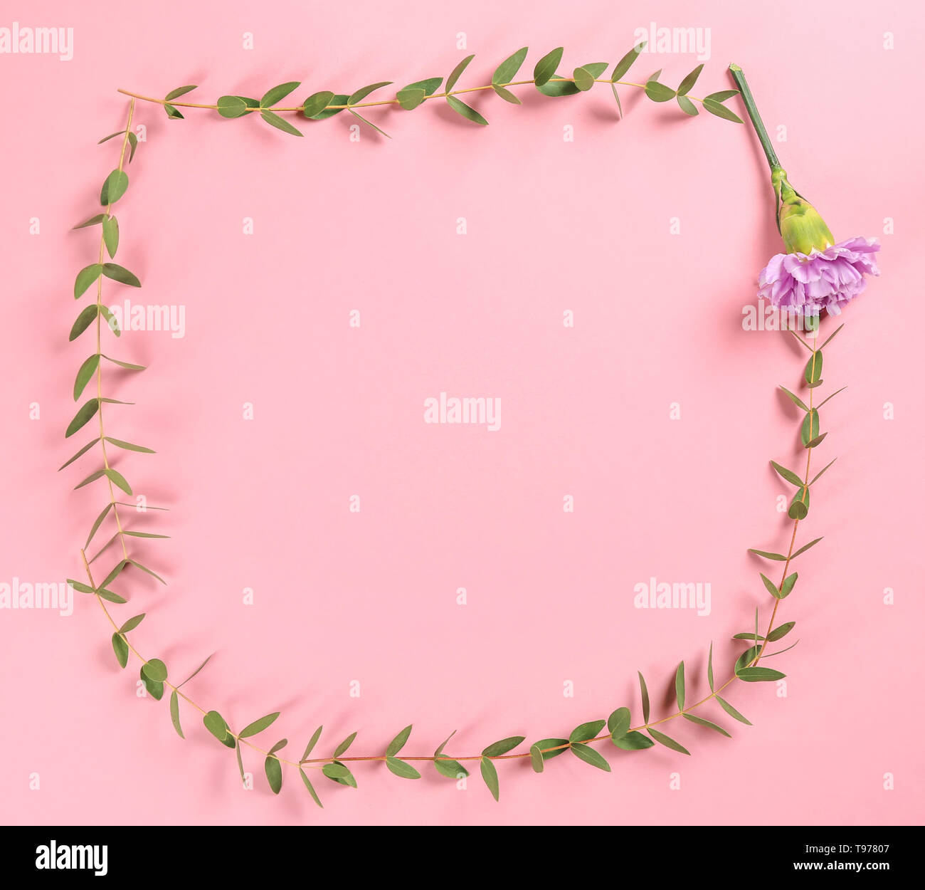 Frame made of green eucalyptus branches and flower on color background - Stock Image